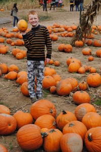 Picking out pumpkins at the farm