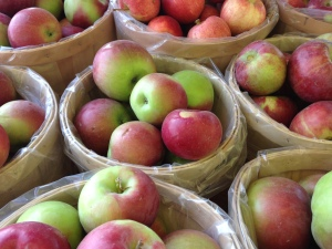 Bushels of fresh apples