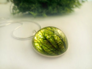 By Neraidas: Real moss filled pendant necklace